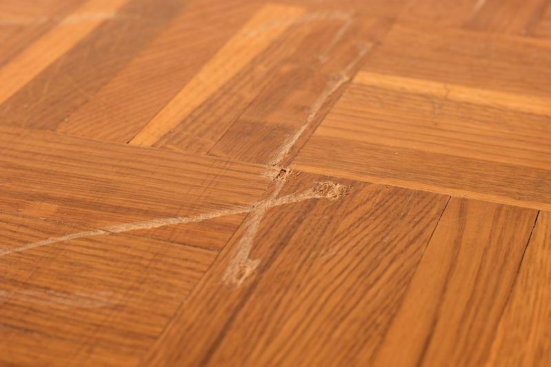 Rysy na panelach podłogowych – co zrobić z porysowanymi panelami? 2