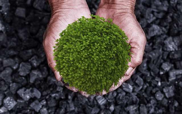 Alternatywa dla węgla na rynku opałowym
