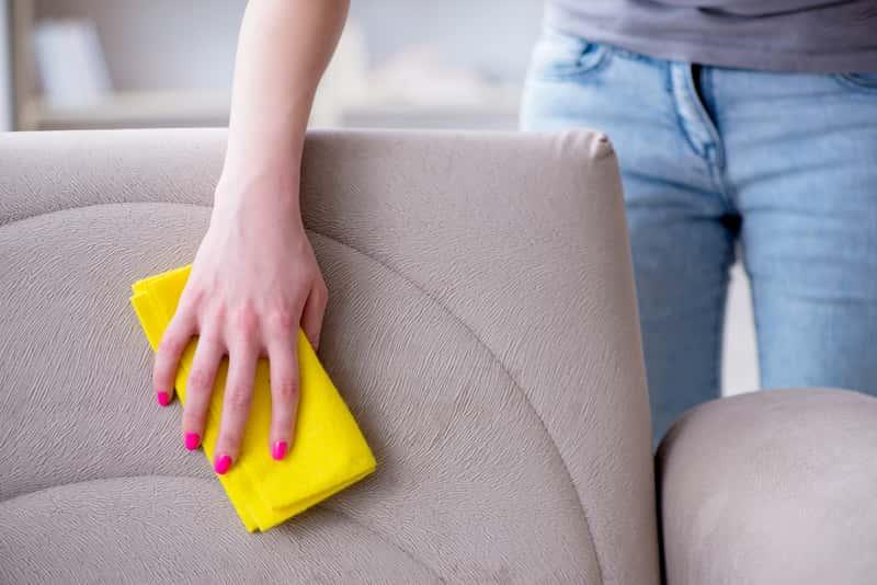 Kobieta podczas czyszczenia tapicerki