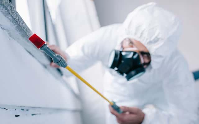 Jak wygląda dezynfekcja mieszkania? Opis, ceny, opinie, porady