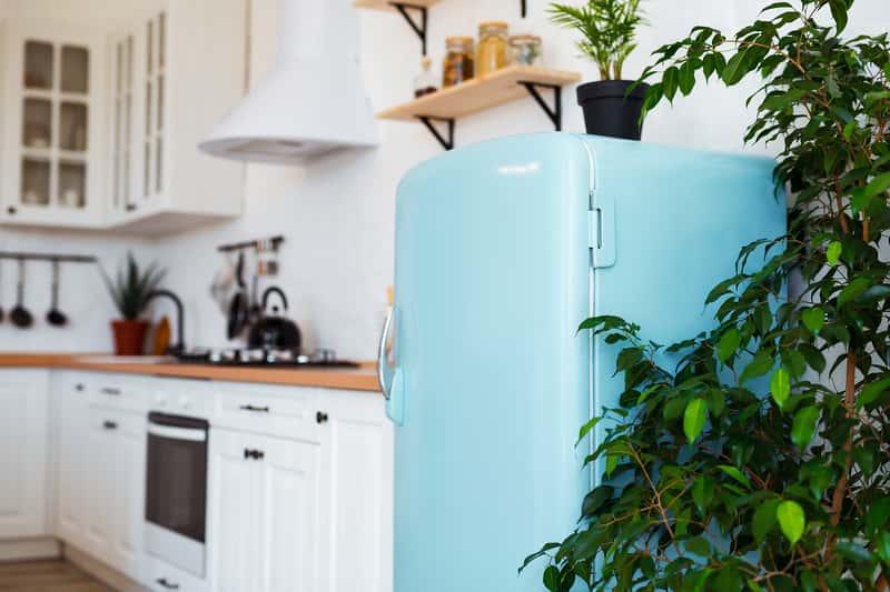 Kolorowe lodówki - przegląd popularnych modeli, opinie, ceny, zalety i wady