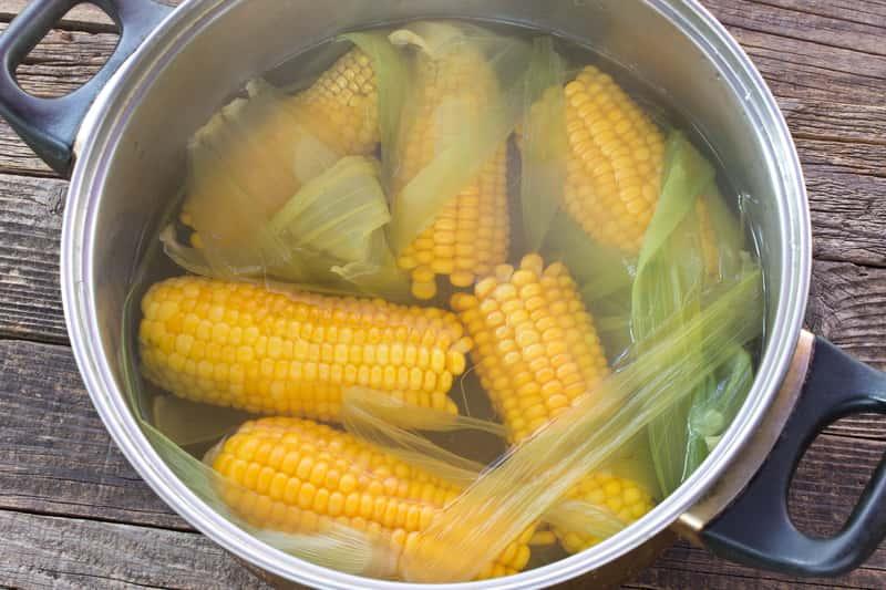 Jak ugotować kolbę kukurydzy? Wyjaśniamy krok po kroku
