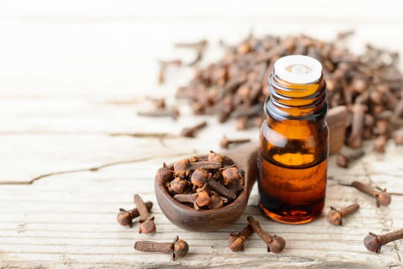 Domowe sposoby na ból dziąseł – 4 sprawdzone metody dające ulgę