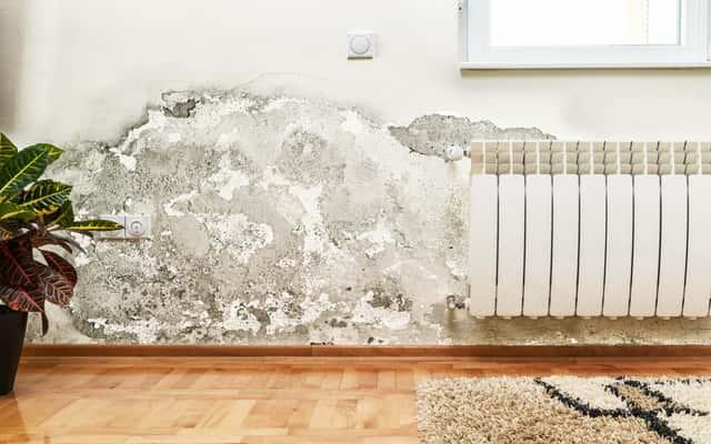 Osuszanie murów i ścian wewnętrznych - najlepsze sposoby i koszty ich zastosowania