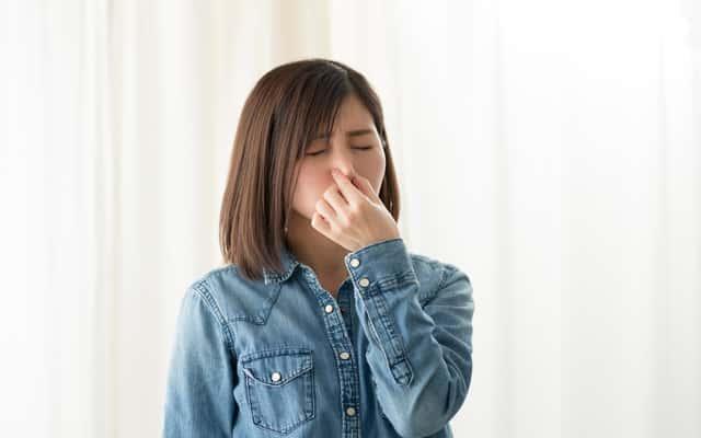 Pochłaniacz zapachów do pomieszczeń – rodzaje, opinie, ceny, zalety, wady