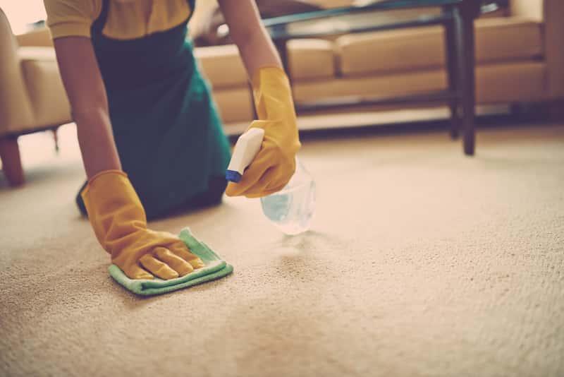 Kobieta podczas prania wykładziny