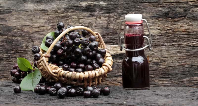 Jak zrobić sok z aronii krok po kroku? 3 praktyczne przepisy krok po kroku