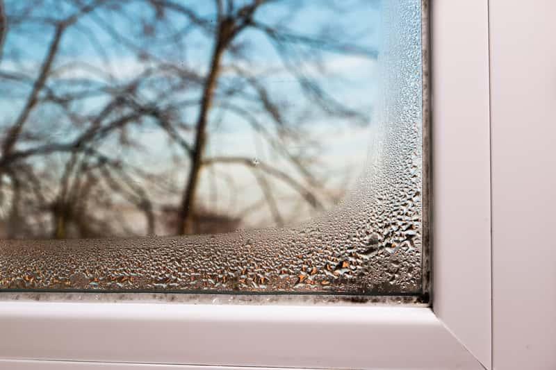 Wilgoć w domu na oknie
