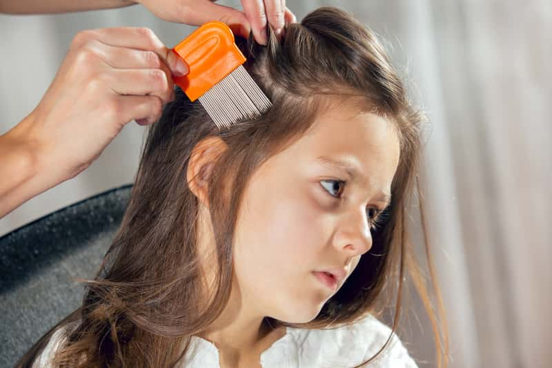 Wszy u dzieci – przyczyny, objawy, sposoby leczenia, polecane preparaty