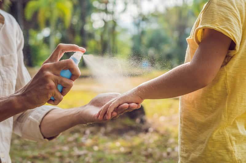 Co odstrasza komary? Preparaty, dźwięki, rośliny i inne sposoby na komary