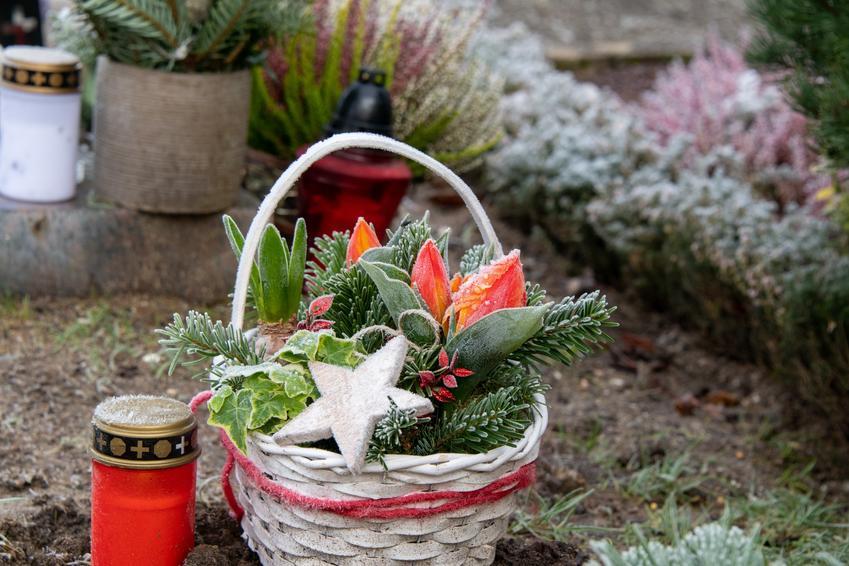 Stroik świąteczny w koszyku na cmentarzu orz porady, jak zrobić stroik świąteczny na cmentarz