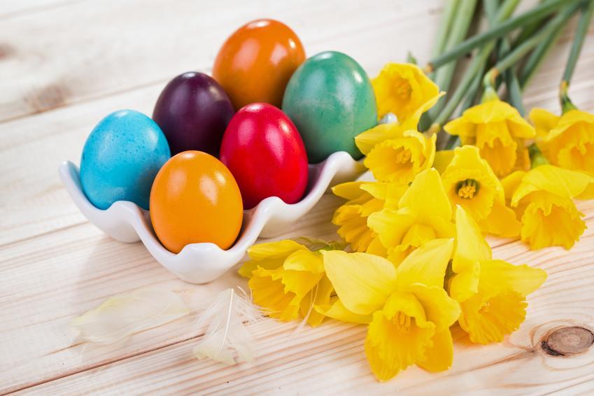 Kolorowe jajka wielkanocne na stole z żonkilami, a także dekoracja jajek wielkanocnych