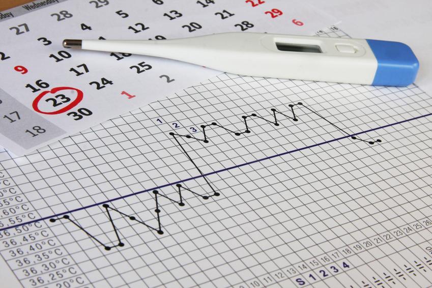 Kalendarz i termometr, czyli porady, jak rozpoznać owulację i jajeczkowanie