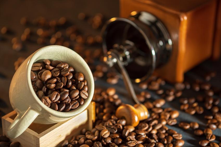 Młynek do kawy - jaki wybrać i na co zwrócić uwagę?