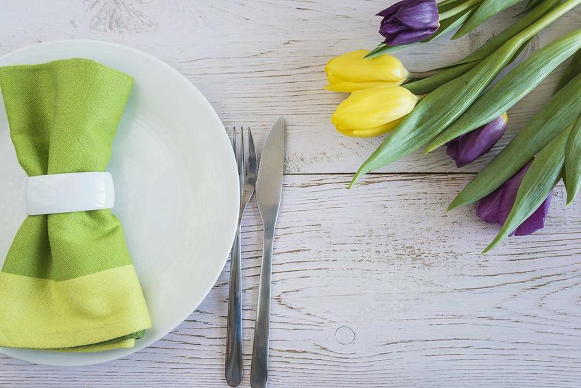 Zielone serwetki papierowe zwinięte na talerzykach, a także jak złożyć serwetkę krok po kroku