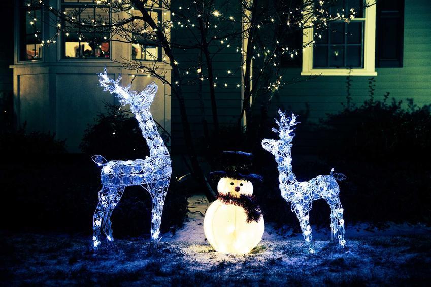 Dekoracje świąteczne i lampki w ogrodzie, a także czym udekorować ogród na święta Bożego Nardzenia