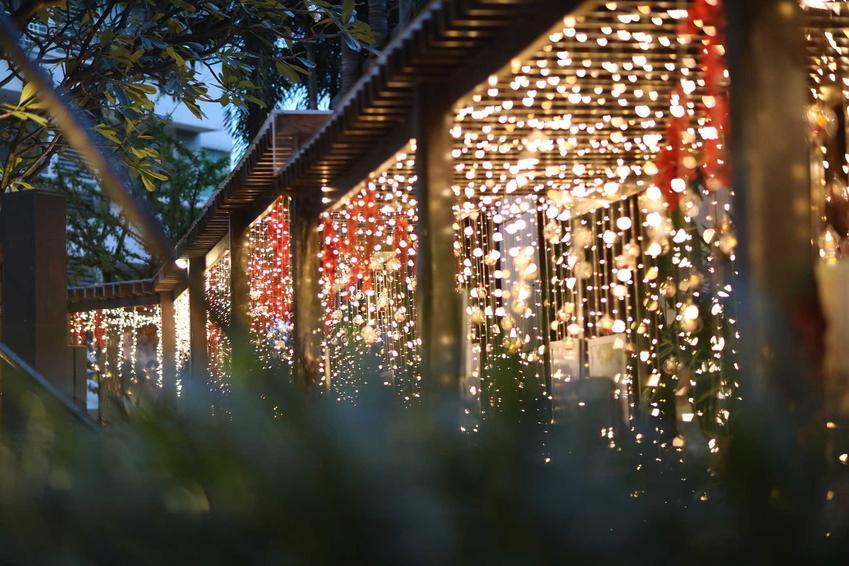 Ogród udekorowany kaskadą lampek i ozdobionych drzewek, a także czym udekorować ogród na święta