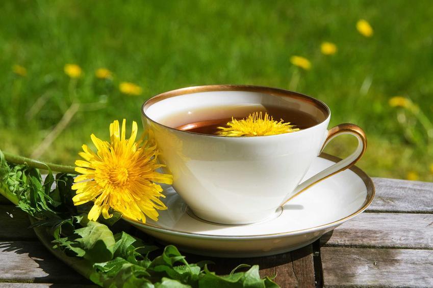 Herbatka z mniszka lekarskiego i inne domowe sposoby, jak zregenerować wątrobę podczas niewielkich problemów