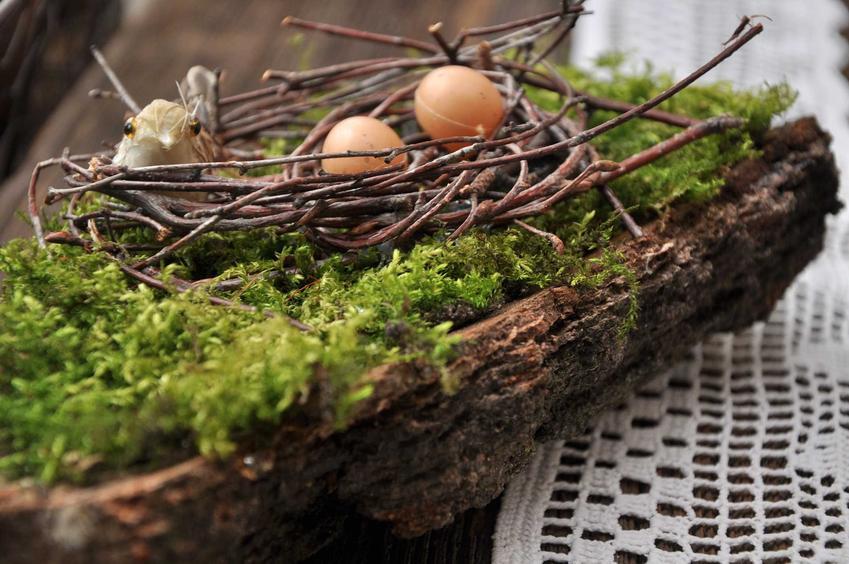 Kora drzewa z mchem jako stroik wielkanocny, a także najlepsze nowoczesne stroiki wielkanocne na stół