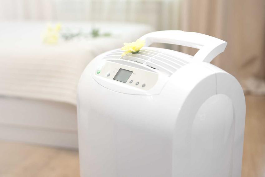 Pochłaniacz kurzu do mieszkania to najlepszy sposób na dokładne oczyszczenie powietrza. Pochłaniacze kurzu zbierają dobre opinie alergików.