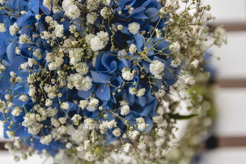 Bukiet z niebieskiej hortensji i gipsówki, a także TOP 5 najpiękniejszych bukietów ślubnych, rodzaje modele oraz modne kwiaty
