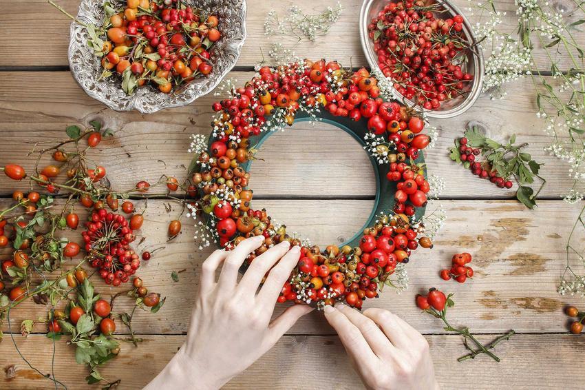 Rworzenie wieńca z drobnych owoców jarzębiny i głogu, a także inne dekoracje oraz stroiki jesienne do różnych zastosowań