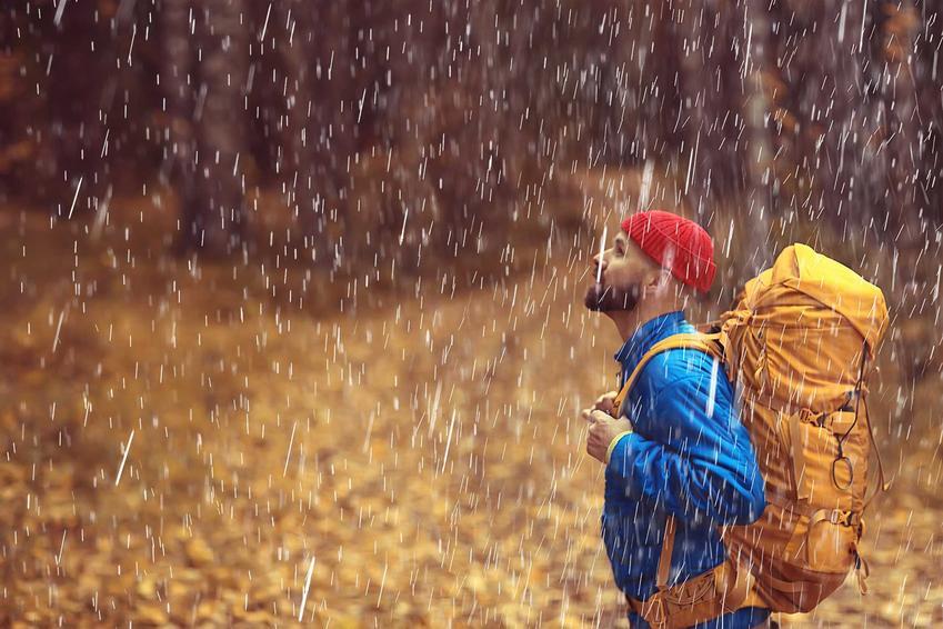 Mężczyzna moknący w lesie, a także podpowiedzi, co zrobić, gdy nas złapie burza w lesie lub w polu
