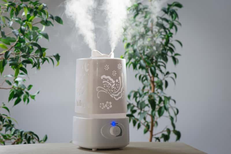 Mały elegancki nawilżacz powietrza z jonizatorem, a także najlepsze nawilżacze powietrza, producenci i modele oraz zastosowanie