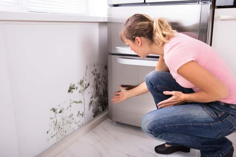 Pleśń na ścianie i suficie to poważny problem, usuwanie pleśni ze ściany i sufitu wymaga zastosowania szczególnych preparatów.