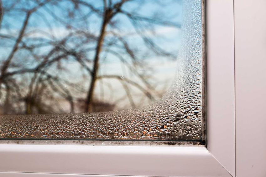 Wilgoć w domu na oknie, a także podpowiedzi, jak zlikwidować wilgoć w domu, najlepsze środki na wilgoć i przeciwgrzybowe