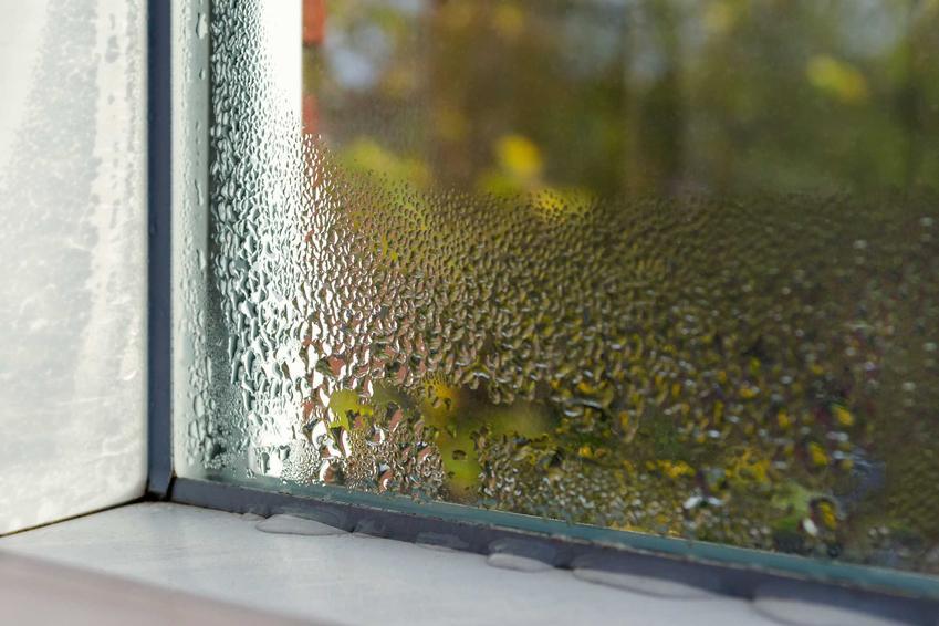 Wilgoć na oknach, czyli parujące okna w domu i sposoby, jak sobie poradzić z wilgocią osadzającą się na szybach w domu