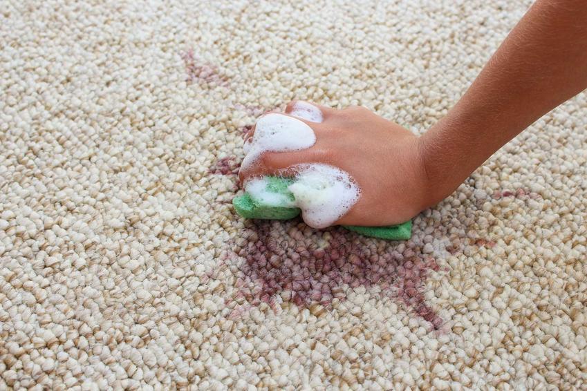 Plamy z jagód są trudne do usunięcia, jednak niektóre domowe sposoby są bardzo przydatne. Usuwanie plam z jagód może być bardzo skuteczne.