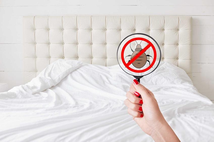 Przekreślona pluskwa na tle łóżka w domu oraz najlepsze domowe sposoby na pluskwy oraz środki i zwalczanie chemiczne