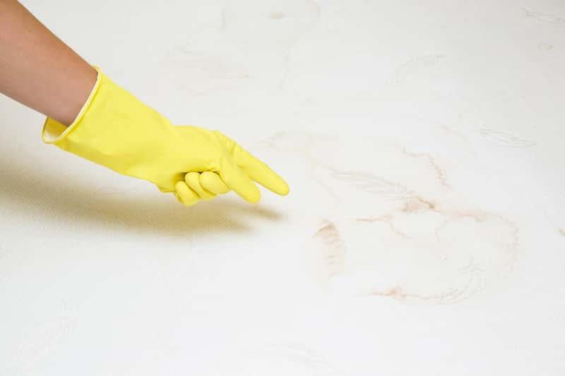 Pranie materaca w domu można zrobic samodzielnie sięgając po domowe sposoby i metody czyszczenia.