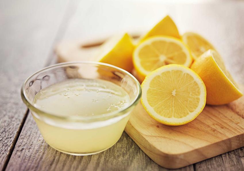 Cytryna i sok z cytryny jako sposób na pchły w domu czy pchły w mieszkaniu oraz zwalczanie pcheł i porady, jak się pozbyć pcheł z domu