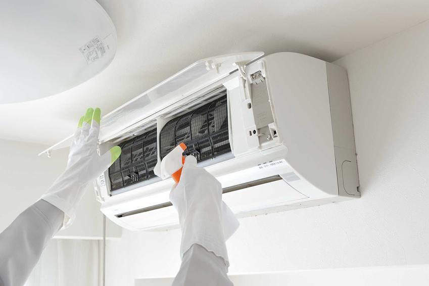 Preparat do odgrzybiania klimatyzacji może być bardzo skuteczny. Jeśli okaże się, że w klimatyzacji jest grzyb, należy zadziałać od razu