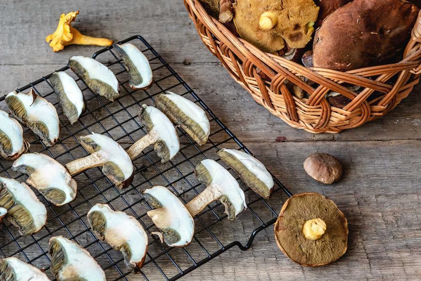 Suszenie grzybów w piekarniku, czyli jak długo i w jakiej temperaturze suszyć grzyby w piekarniku krok po kroku