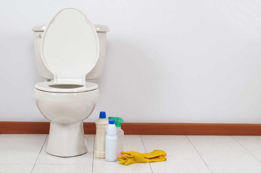 Kamień w toalecie, czyli jak wyczyścić toaletę z kamienia i usuwanie kamienia z toalety domowymi sposobami