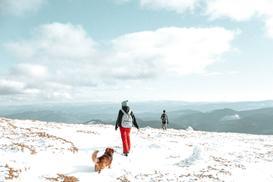 Jakie spodnie trekkingowe najlepiej sprawdzą się w góry zimą?