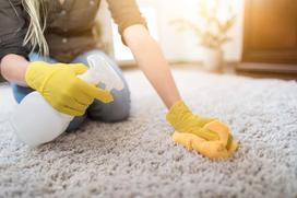 Środki do prania dywanów - rodzaje, ceny, sposób stosowania