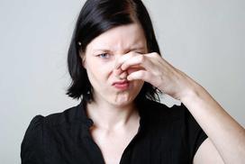 Jak usunąć zapach moczu w domu? Domowe sposoby na uciążliwy problem